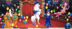 Decordoek Circus huren Alphen aan den Rijn